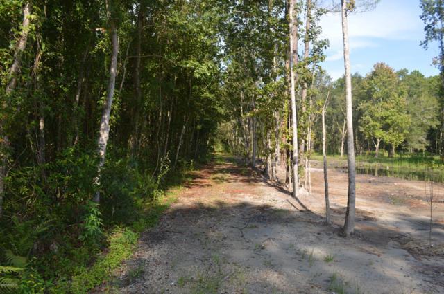 13755 Webb Rd, Jacksonville, FL 32218 (MLS #896449) :: Memory Hopkins Real Estate