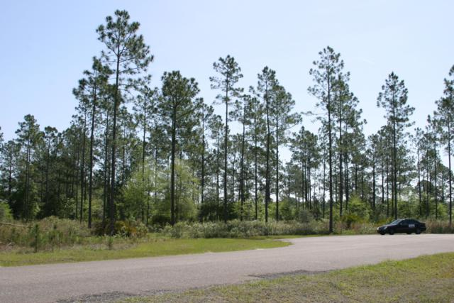 14449 Cutter Ct, Bryceville, FL 32009 (MLS #931913) :: Sieva Realty
