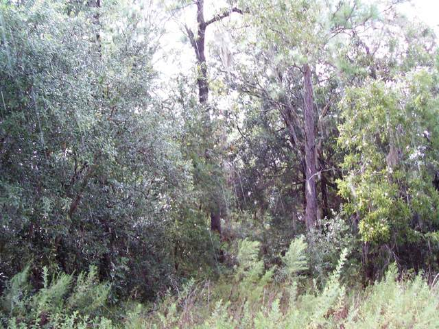 LOT 1 SE 3RD Ave, Keystone Heights, FL 32656 (MLS #953308) :: EXIT 1 Stop Realty