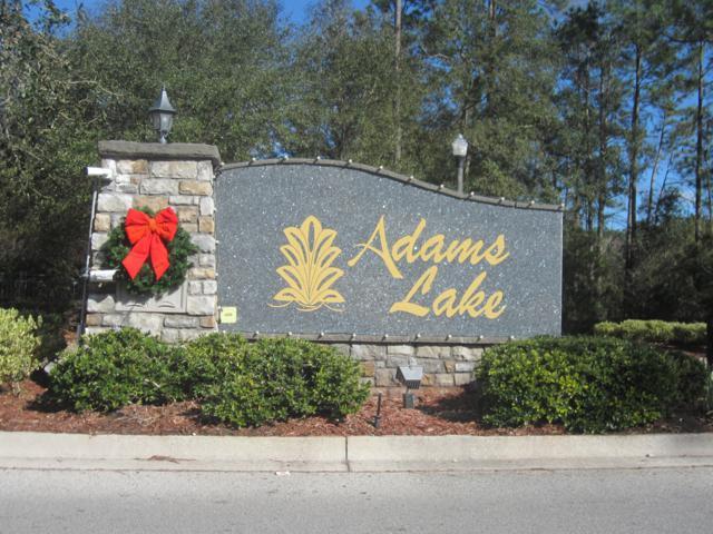 11666 Brian Lakes Dr N, Jacksonville, FL 32221 (MLS #971242) :: The Hanley Home Team