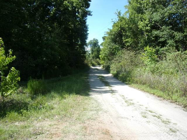 TBD E Moccasin Creek Ln, Palatka, FL 32177 (MLS #827369) :: Keller Williams Realty Atlantic Partners St. Augustine