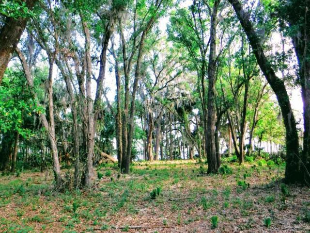 133 Orange Tree Rd, East Palatka, FL 32131 (MLS #873749) :: Sieva Realty