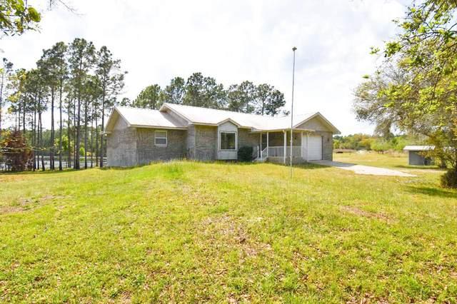 117 Palmetto Rd, Georgetown, FL 32139 (MLS #1094020) :: The Randy Martin Team | Watson Realty Corp