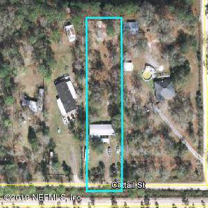 5032 Cattail St, Middleburg, FL 32068 (MLS #1020551) :: The Hanley Home Team
