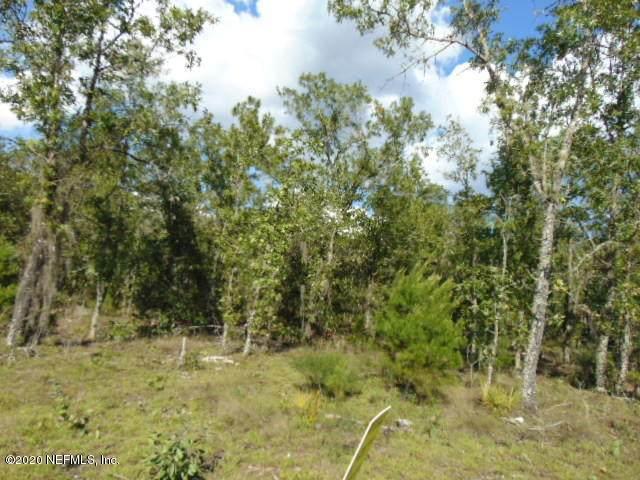 218 Dove St, Interlachen, FL 32148 (MLS #1057960) :: Memory Hopkins Real Estate