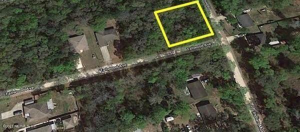 111 Indian Mound Rd, Satsuma, FL 32189 (MLS #1119022) :: The Volen Group, Keller Williams Luxury International