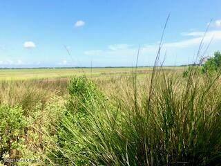 96424 Soap Creek Dr, Fernandina Beach, FL 32034 (MLS #1122585) :: The Cotton Team 904