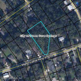 1020 Martin Luther King Jr Blvd, GREEN COVE SPRINGS, FL 32043 (MLS #1126827) :: Olson & Taylor   RE/MAX Unlimited