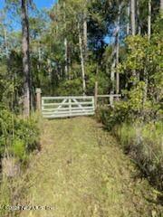 00 Silver Moss Cir, Middleburg, FL 32068 (MLS #1133667) :: Berkshire Hathaway HomeServices Chaplin Williams Realty