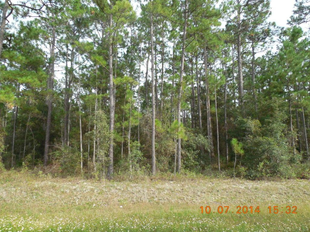 00 County Rd 219-A - Photo 1