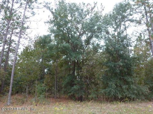 229 Melrose Landing Blvd, Hawthorne, FL 32640 (MLS #872371) :: EXIT Real Estate Gallery