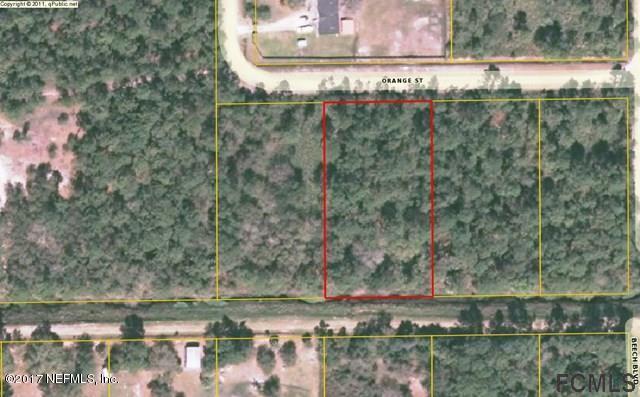 2560 Orange St, Bunnell, FL 32110 (MLS #891071) :: EXIT Real Estate Gallery