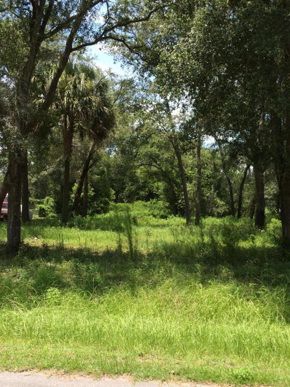 1234 Travers Rd, GREEN COVE SPRINGS, FL 32043 (MLS #892590) :: EXIT Real Estate Gallery