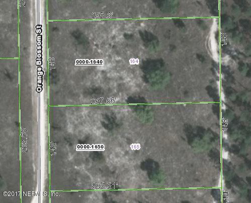 210 Orange Blossom St, Pomona Park, FL 32181 (MLS #902252) :: EXIT Real Estate Gallery