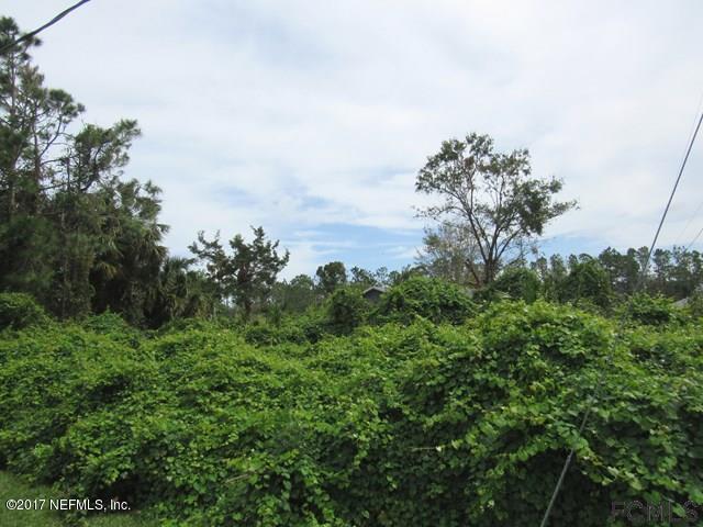 35 Royal Leaf Ln, Palm Coast, FL 32164 (MLS #903455) :: EXIT Real Estate Gallery