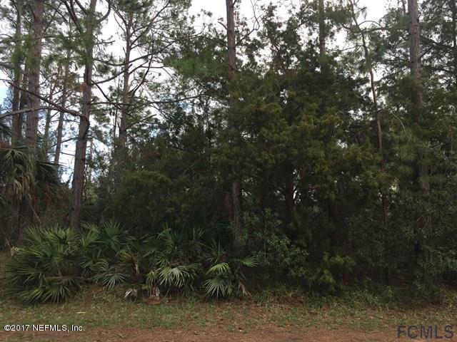 287 Parkview Dr, Palm Coast, FL 32164 (MLS #904426) :: EXIT Real Estate Gallery