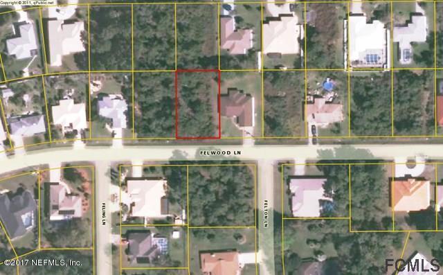 16 Felwood Ln, Palm Coast, FL 32137 (MLS #913637) :: EXIT Real Estate Gallery