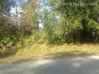 132 Clearwater Rd, Satsuma, FL 32189 (MLS #913802) :: EXIT Real Estate Gallery