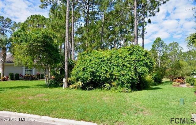 42 Osprey Cir, Palm Coast, FL 32137 (MLS #915610) :: EXIT Real Estate Gallery