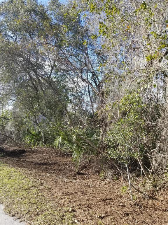 0 SE 22ND Ln, SILVER SPRINGS, FL 34488 (MLS #919329) :: CenterBeam Real Estate