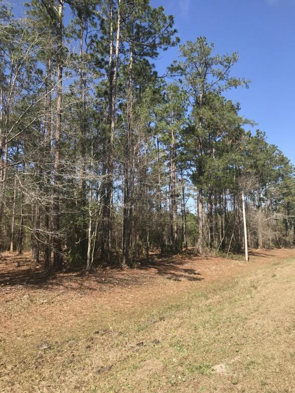 9810 Co Rd 121, Bryceville, FL 32009 (MLS #921899) :: EXIT Real Estate Gallery