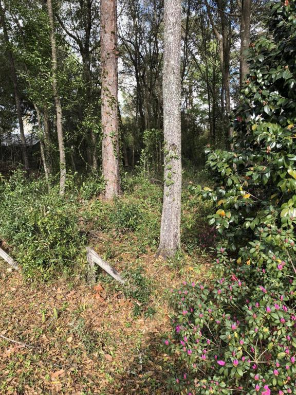 0000 SE 1ST Ave, Keystone Heights, FL 32656 (MLS #923754) :: CrossView Realty