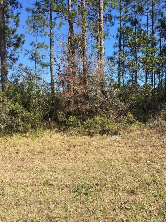0000 County Road 127, Sanderson, FL 32087 (MLS #925506) :: Perkins Realty