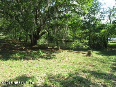 12544 Daryl Hill Rd, Jacksonville, FL 32218 (MLS #929976) :: The Hanley Home Team
