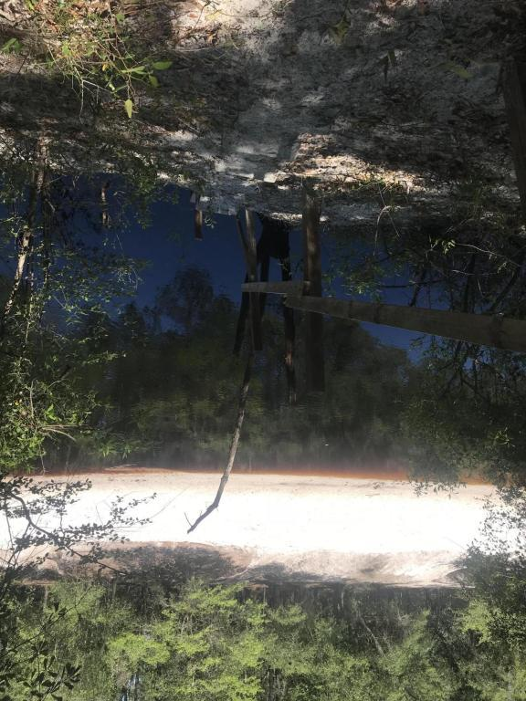 2063 St Marys River Bluff Rd, St George, GA 31562 (MLS #933593) :: Sieva Realty