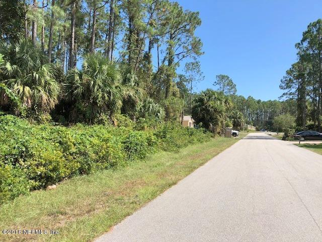 49 Pony Express Dr, Palm Coast, FL 32164 (MLS #959587) :: Sieva Realty