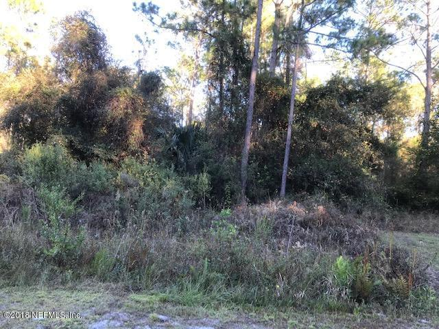 000 Lakeshore Dr, Georgetown, FL 32139 (MLS #969807) :: Memory Hopkins Real Estate