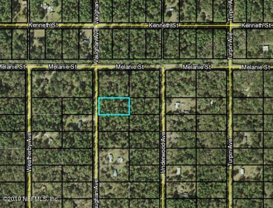 10010 Vaughan Ave, Hastings, FL 32145 (MLS #981746) :: Berkshire Hathaway HomeServices Chaplin Williams Realty