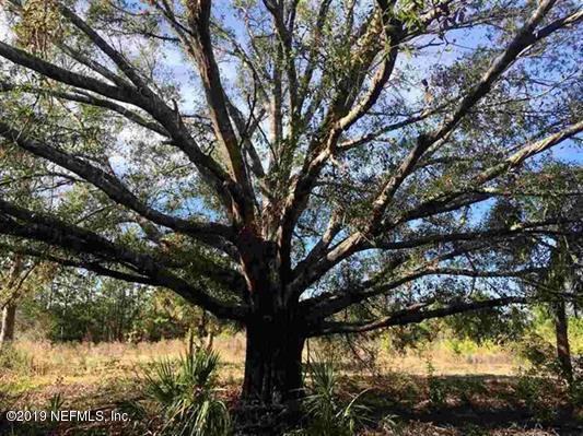 3165 Cr 208, St Augustine, FL 32092 (MLS #986449) :: Florida Homes Realty & Mortgage