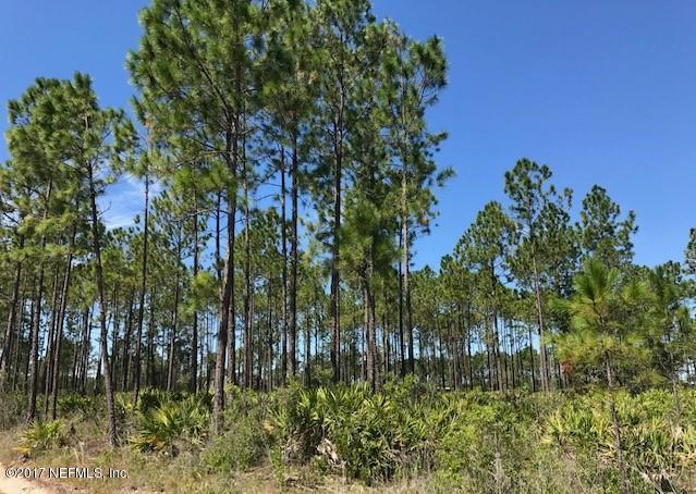 LOT 57A King Ruise Rd, Glen St. Mary, FL 32040 (MLS #898101) :: EXIT Real Estate Gallery
