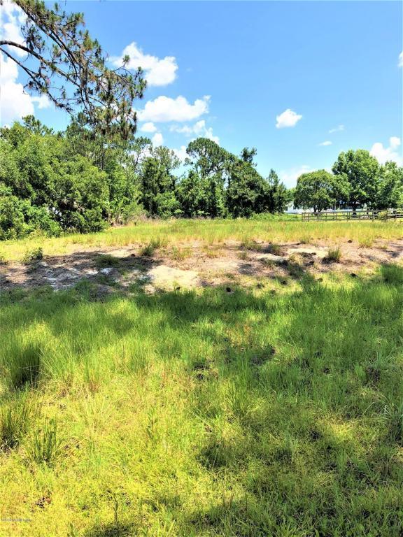 116 Lisa Ter, Crescent City, FL 32112 (MLS #930457) :: Memory Hopkins Real Estate