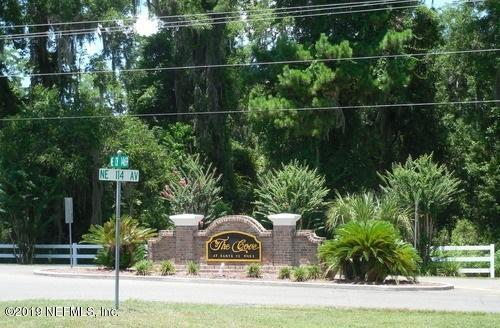 21619 NE 115TH Ave, EARLETON, FL 32631 (MLS #985275) :: The Hanley Home Team