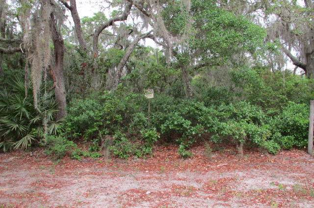 107 Clear Lake Rd, Crescent City, FL 32112 (MLS #1102156) :: EXIT Real Estate Gallery