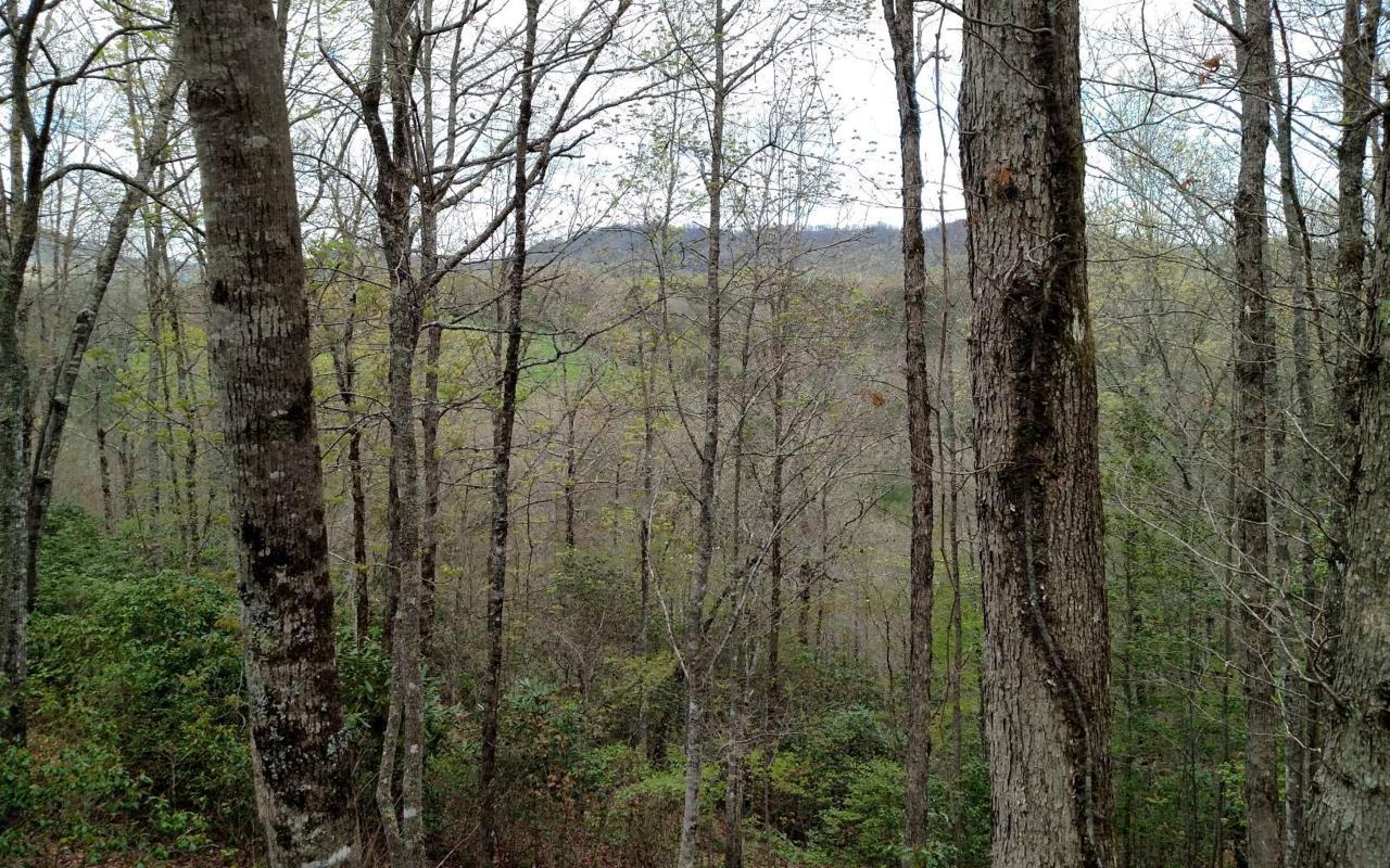 3 Willow Ridge - Photo 1