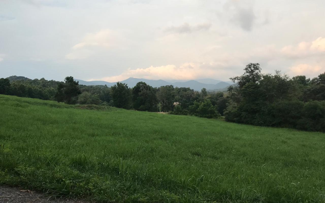 LT 14 Rich Field Estates - Photo 1