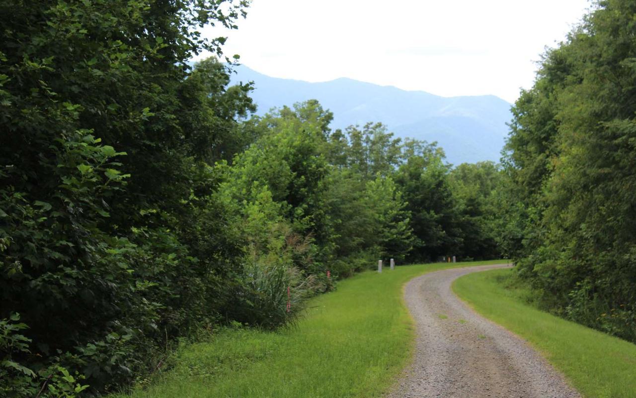 48 N Ridge High Meadows - Photo 1