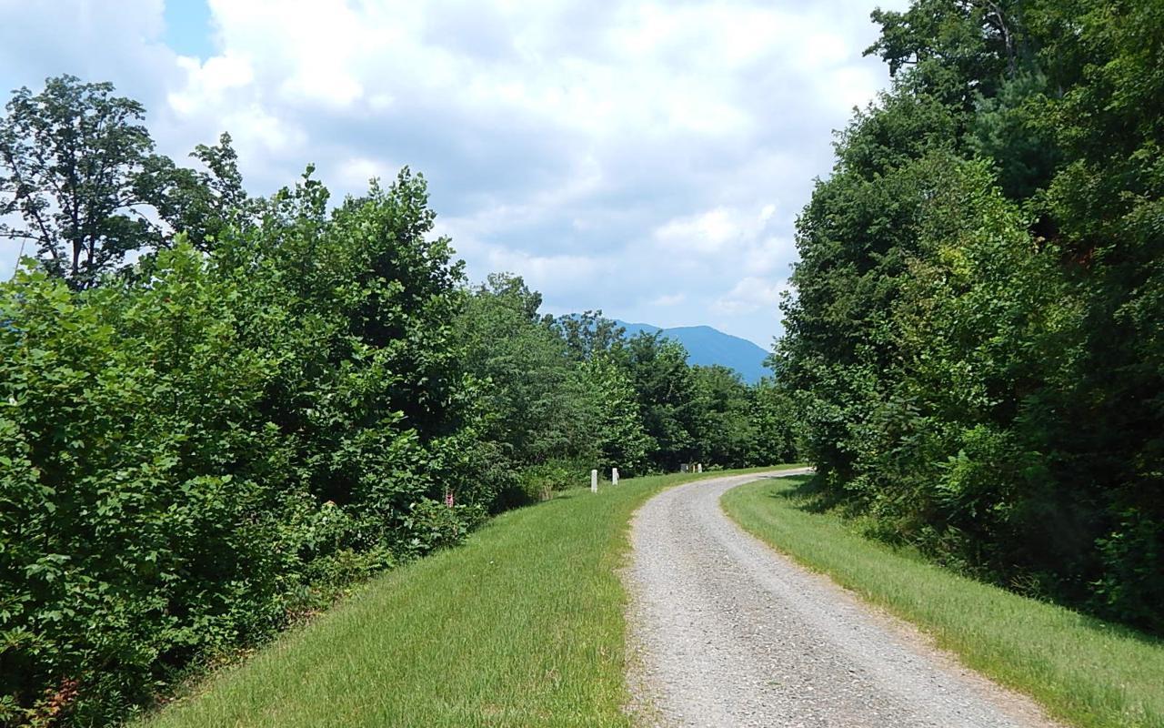 L 52 N Ridge High Meadows - Photo 1