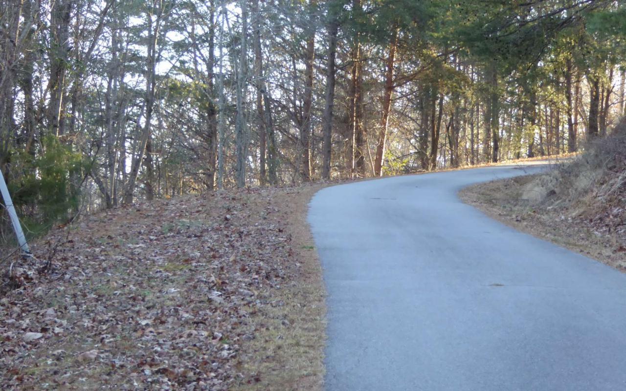 LT 9 Golden Oak Estates - Photo 1