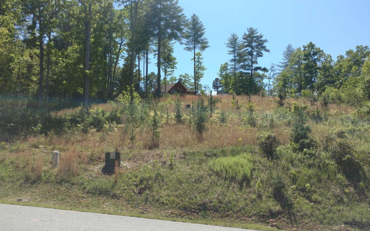 LT 32 Point Overlook Trail - Photo 1