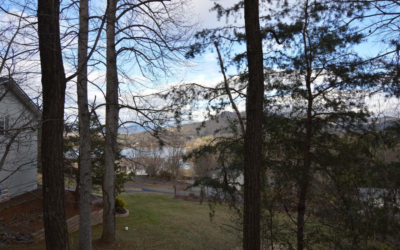 LOT 4 Brer Fox Ridge - Photo 1