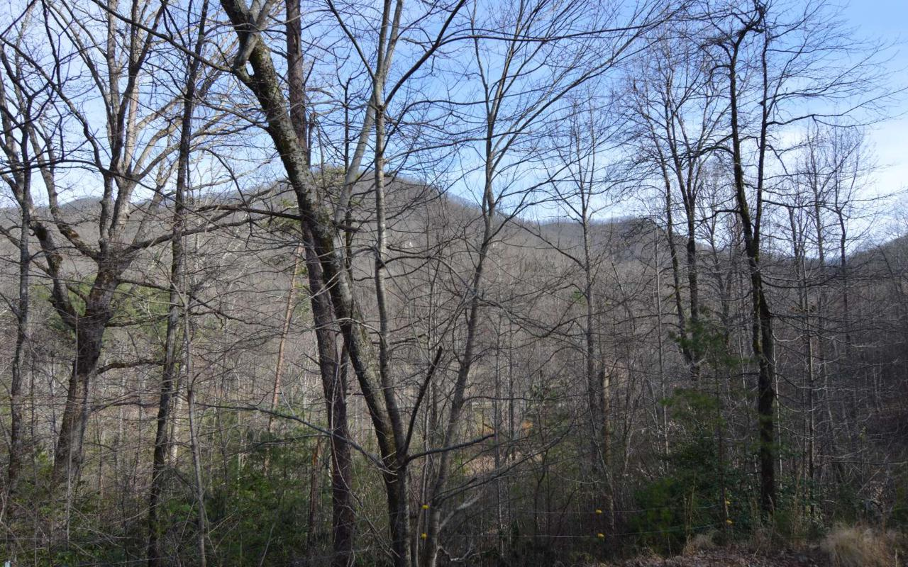 Cold Branch Road - Photo 1