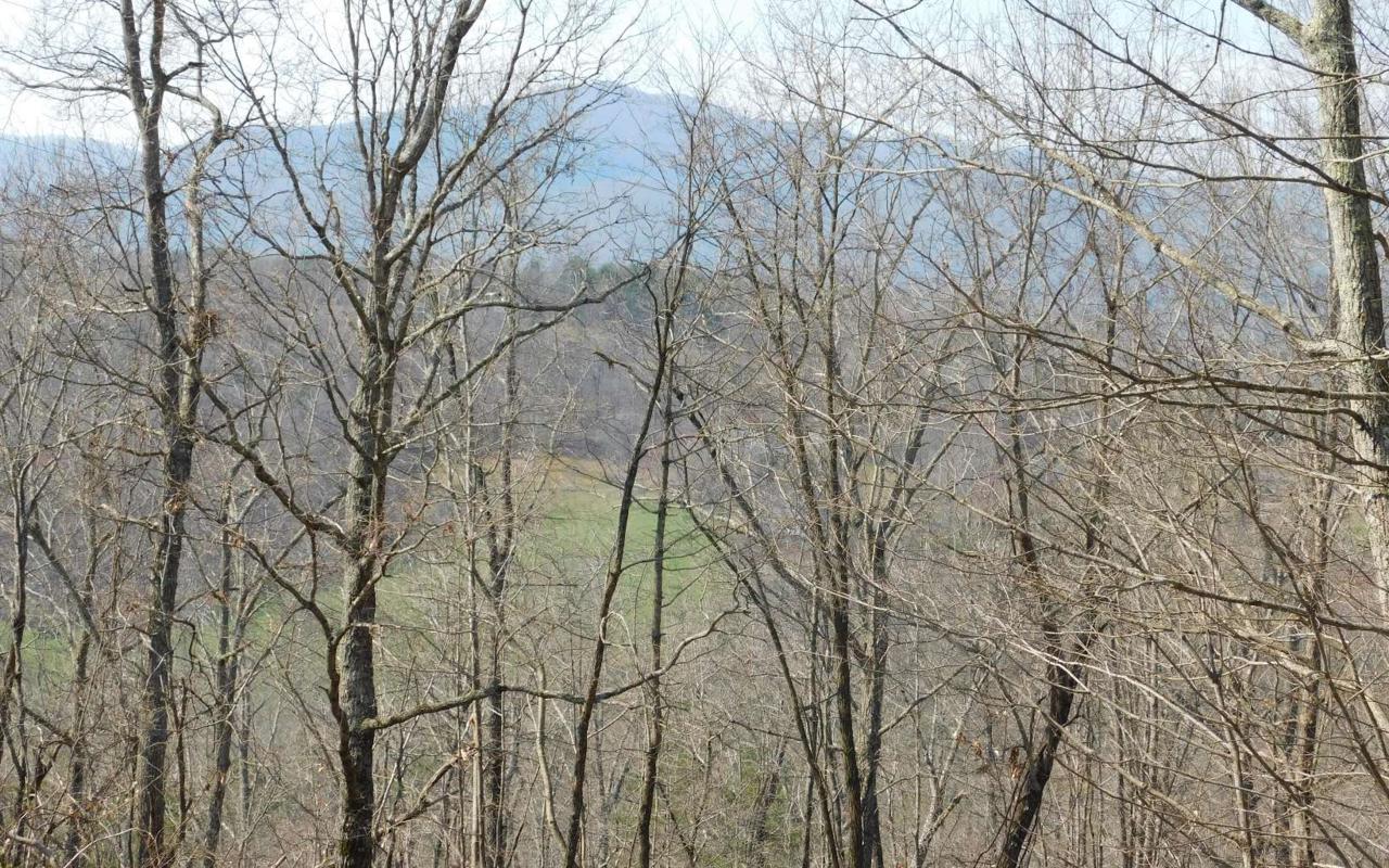 LOT 1 Deer Valley - Photo 1