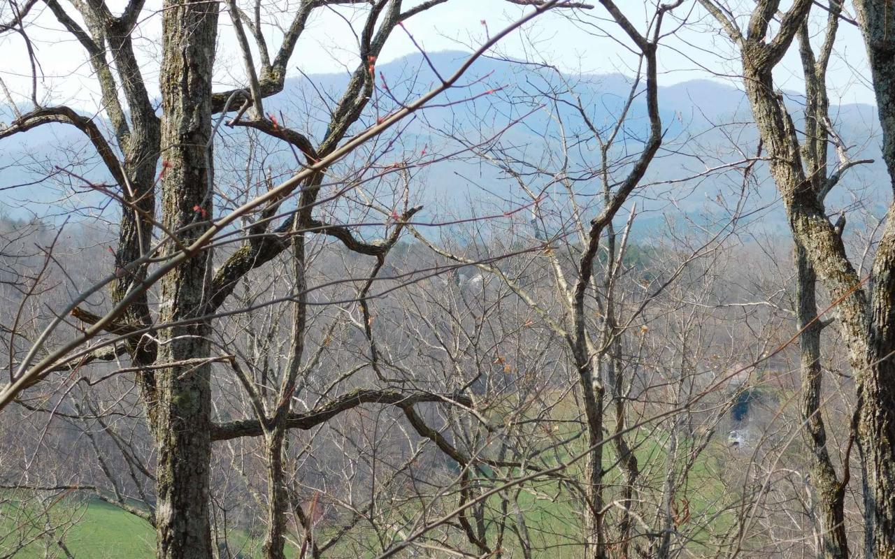 LOT 2 Deer Valley - Photo 1