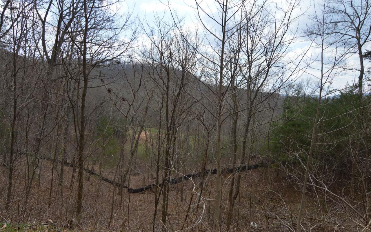 LT 11 Deer Valley - Photo 1
