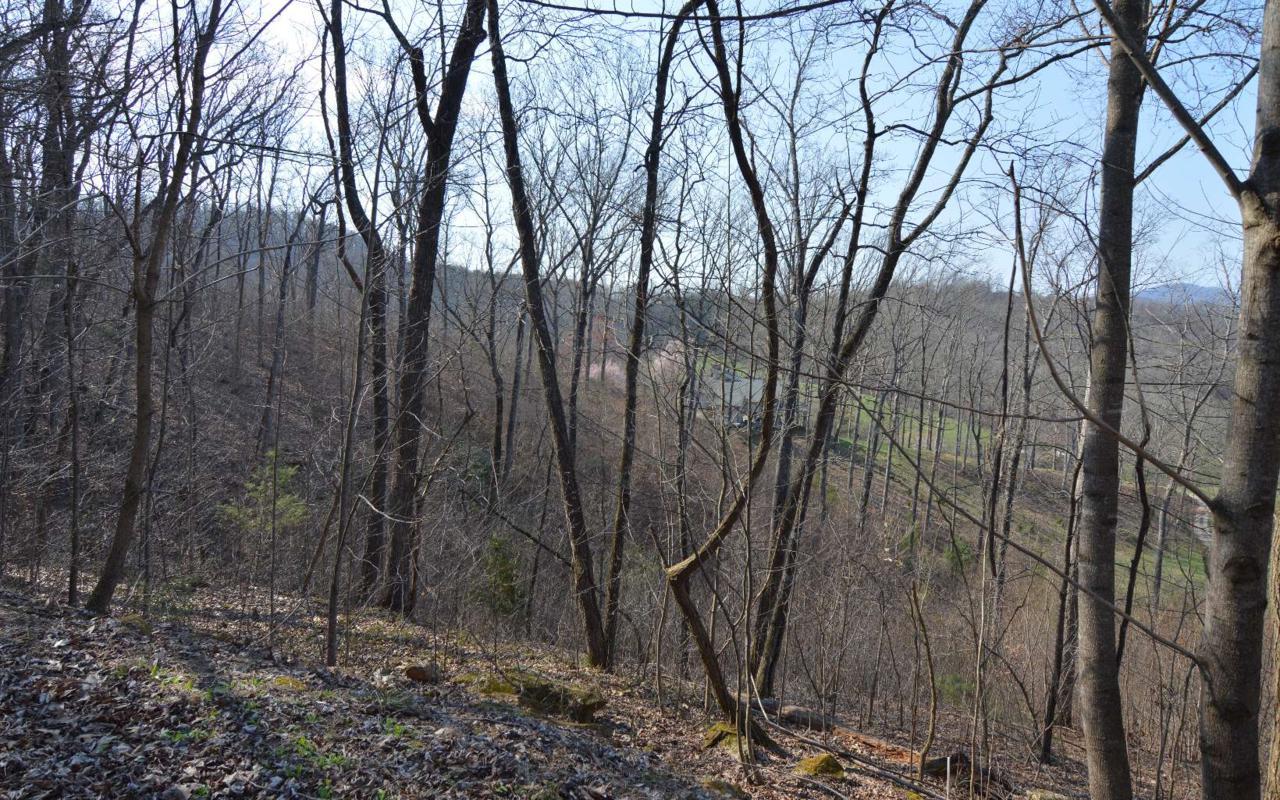 LT 14 Deer Valley - Photo 1