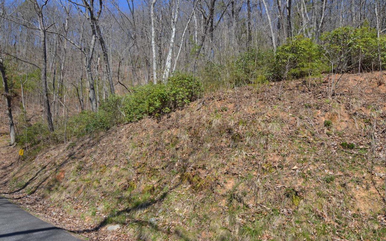 LT 15 Deer Valley - Photo 1